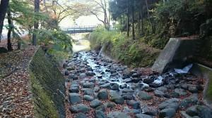枝杓流川と橋