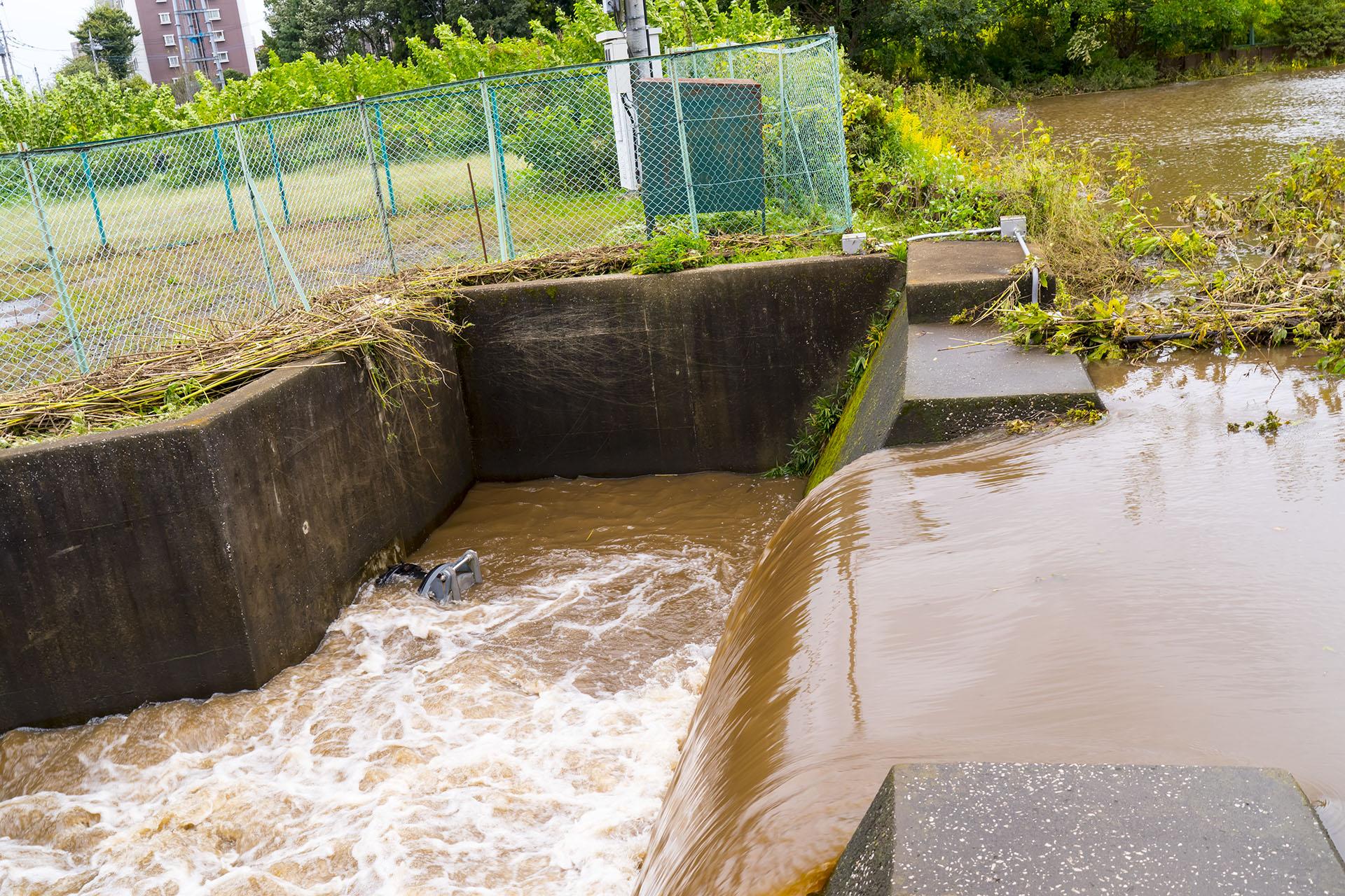 台風21号の通過後の小手指の調整池を確認