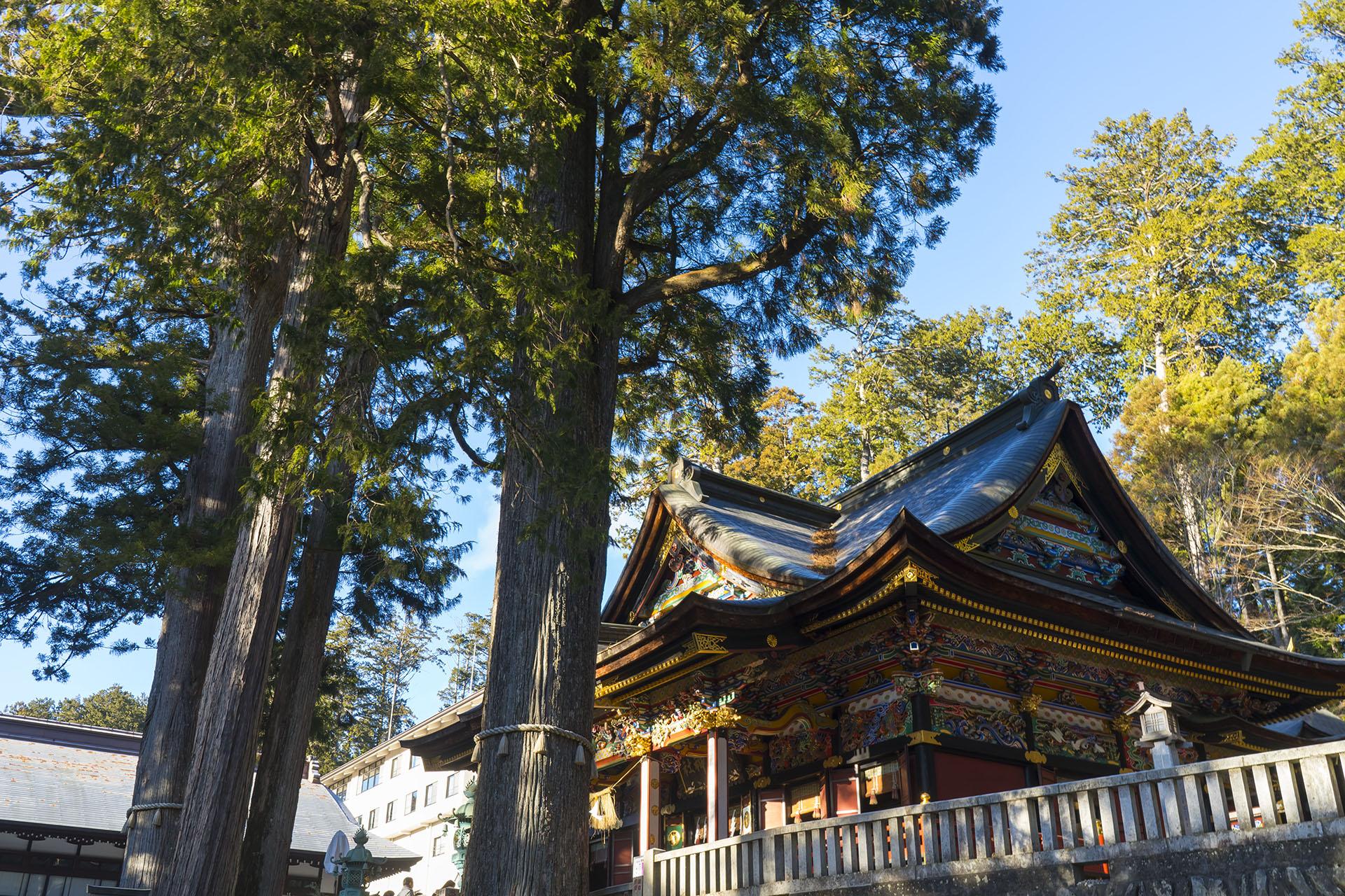 2018年の初詣は秩父の三峯神社