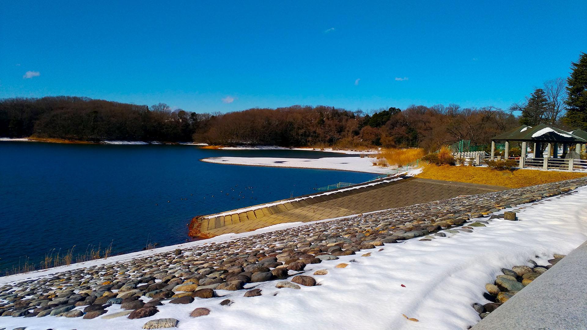雪の残る狭山湖を見てきた日