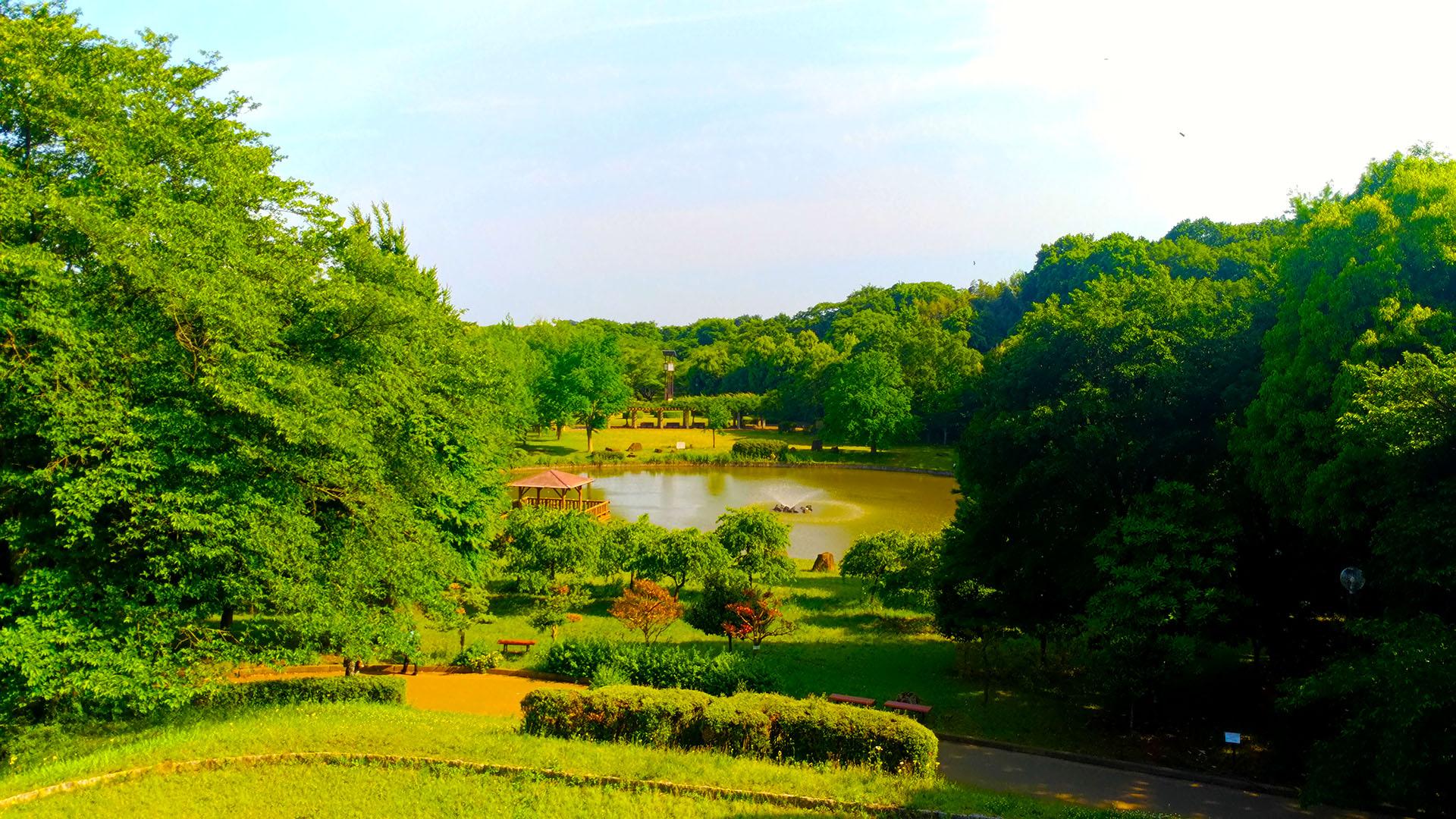 立ち寄った城山公園