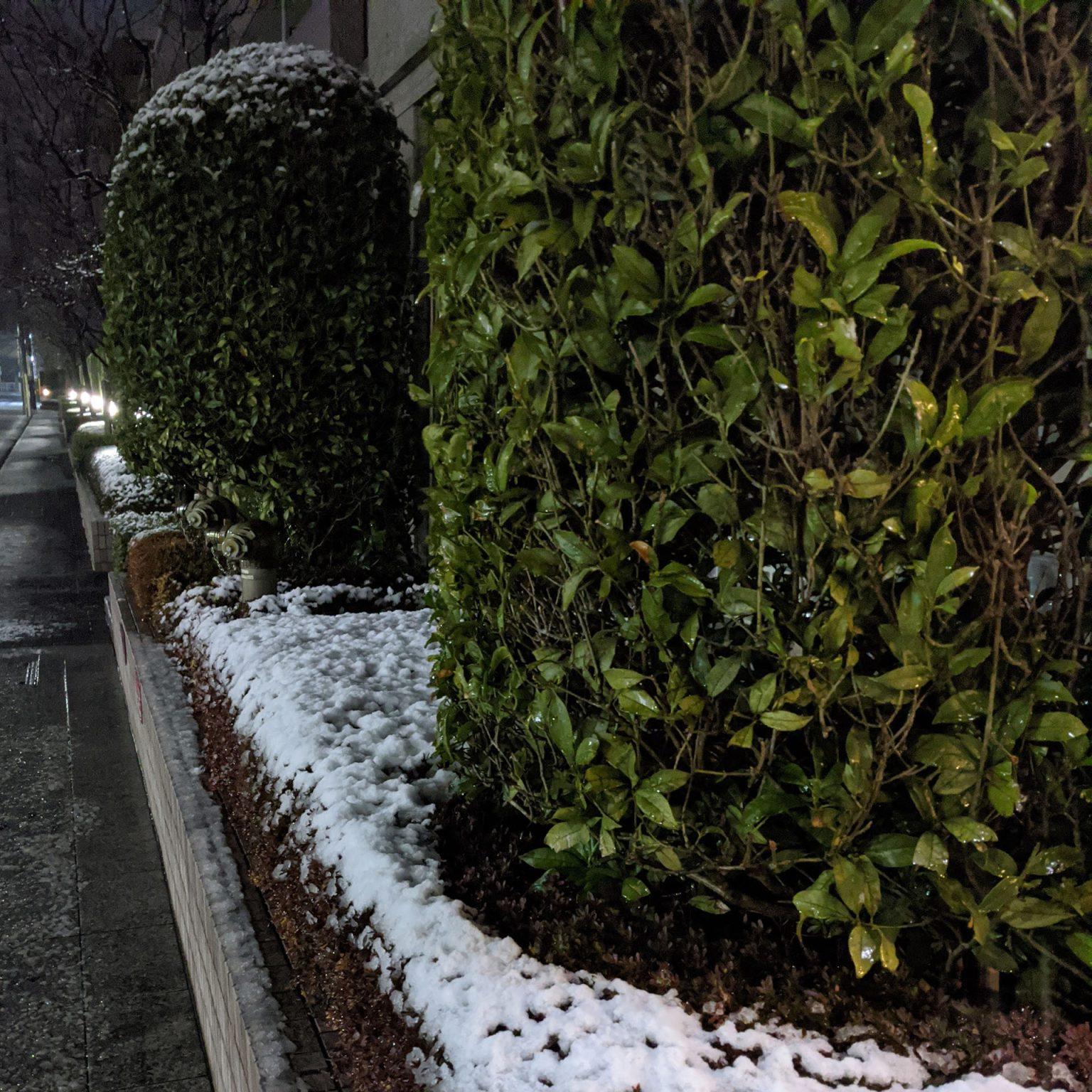 雪降る夜景を撮影してみた